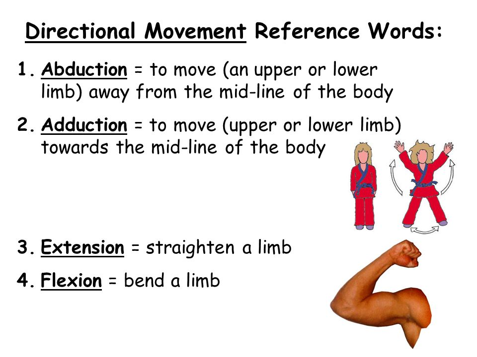 Directional Movement Reference Words: