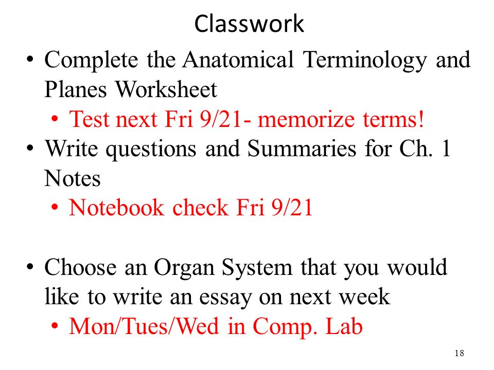 Ch 1 Anatomical Terminology Ppt Video Online Download. Classwork Plete The Anatomical Terminology And Planes Worksheet. Worksheet. Anatomical Terminology Worksheet At Clickcart.co