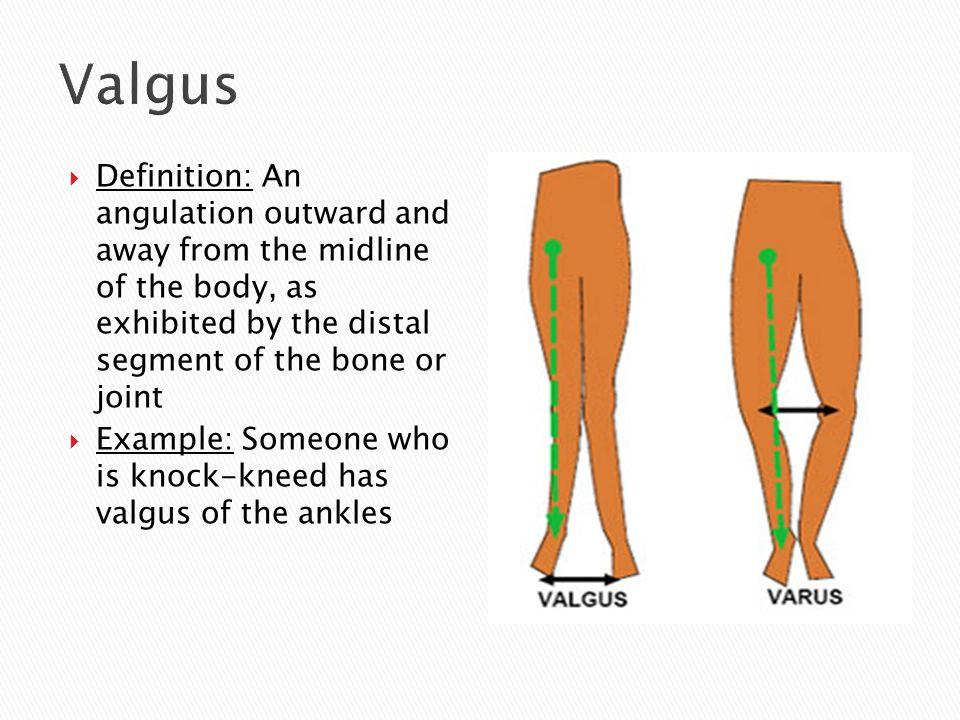 Beautiful Distal Definition Anatomy Gift - Anatomy Ideas - yunoki.info