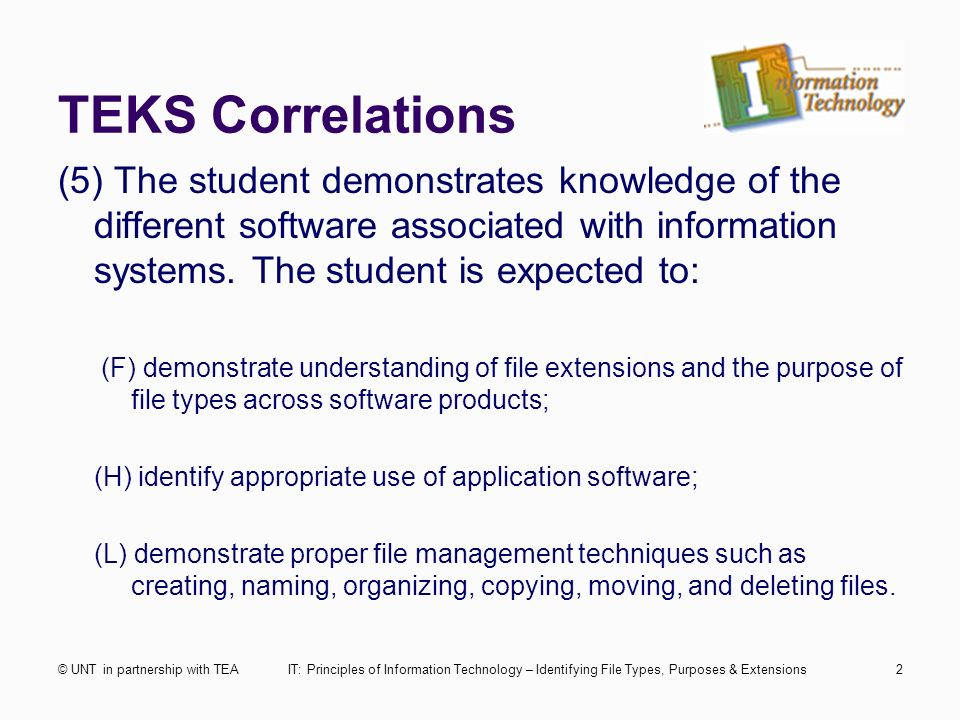 information technology file management