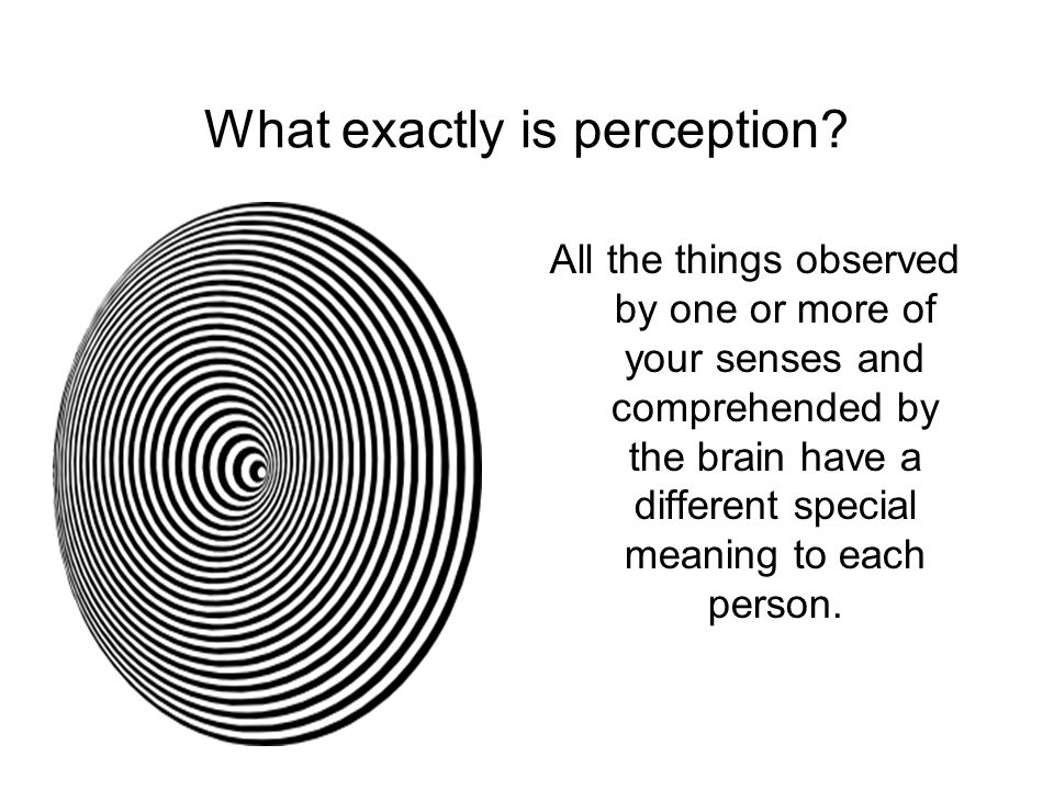 What exactly is perception
