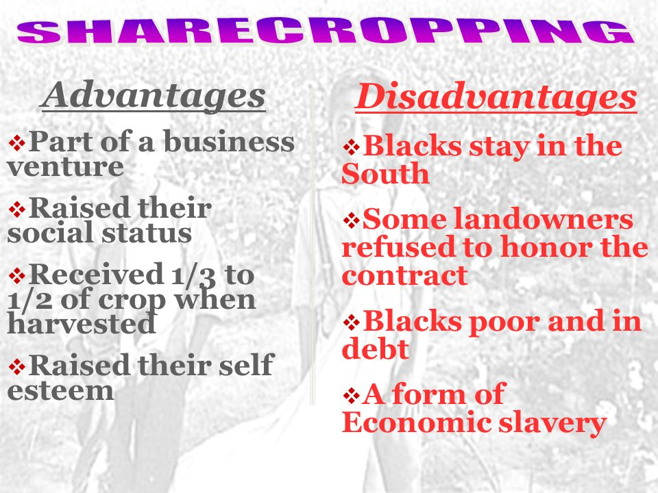 advantages and disadvantages of sharecropping