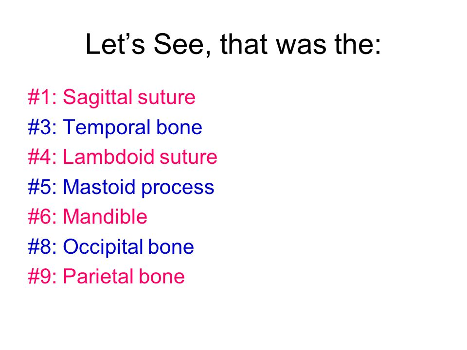 Let's See, that was the: #1: Sagittal suture #3: Temporal bone