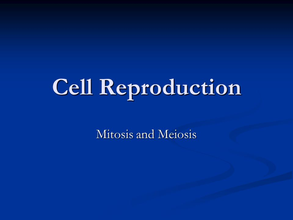 Cell Reproduction Mitosis and Meiosis