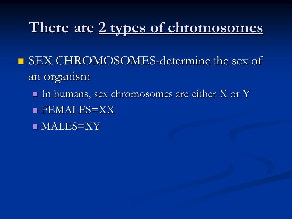 There are 2 types of chromosomes