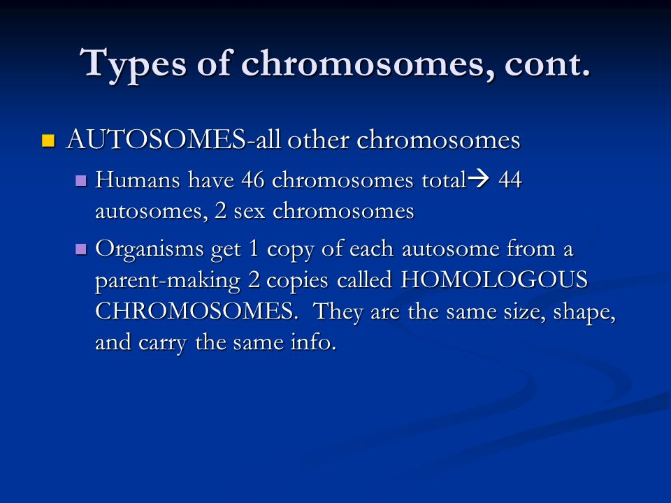 Types of chromosomes, cont.