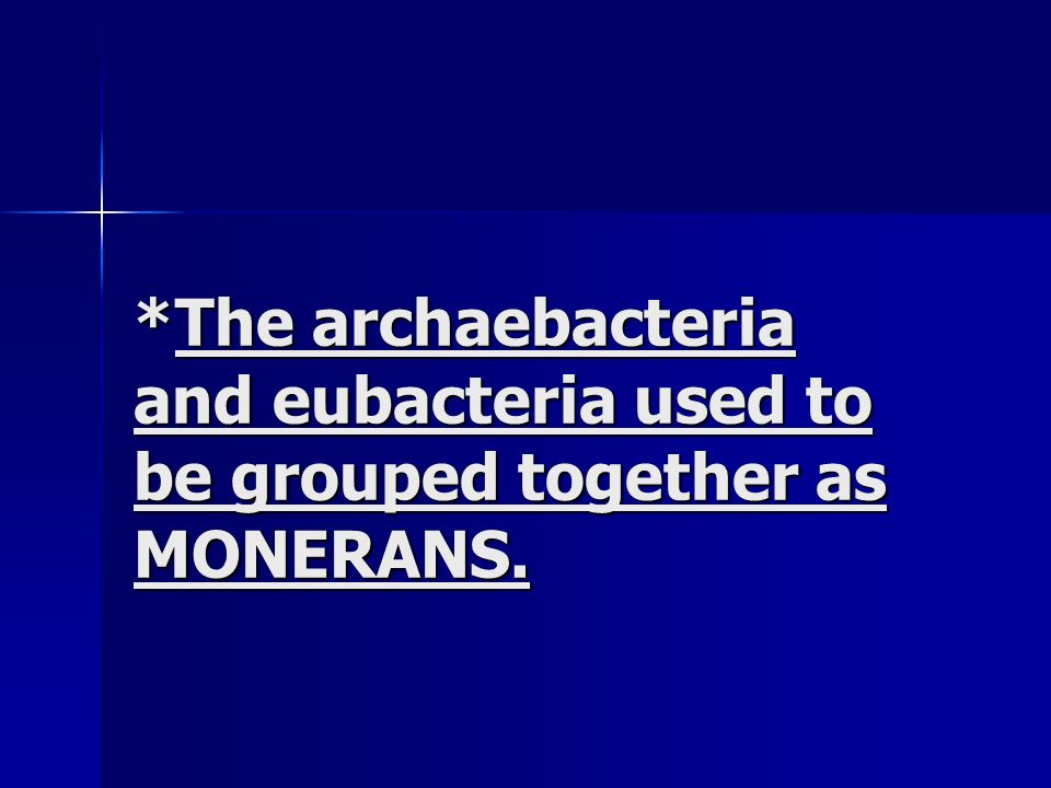 *The archaebacteria and eubacteria used to be grouped together as MONERANS.