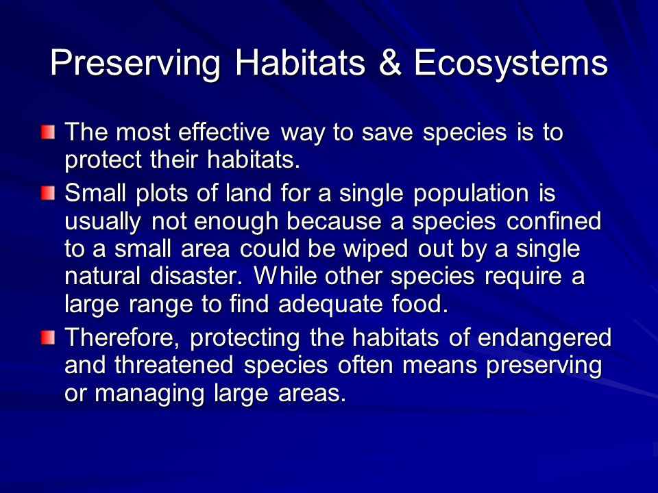 Preserving Habitats & Ecosystems