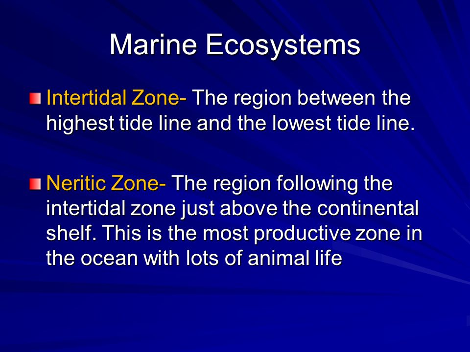 Marine Ecosystems Intertidal Zone- The region between the highest tide line and the lowest tide line.