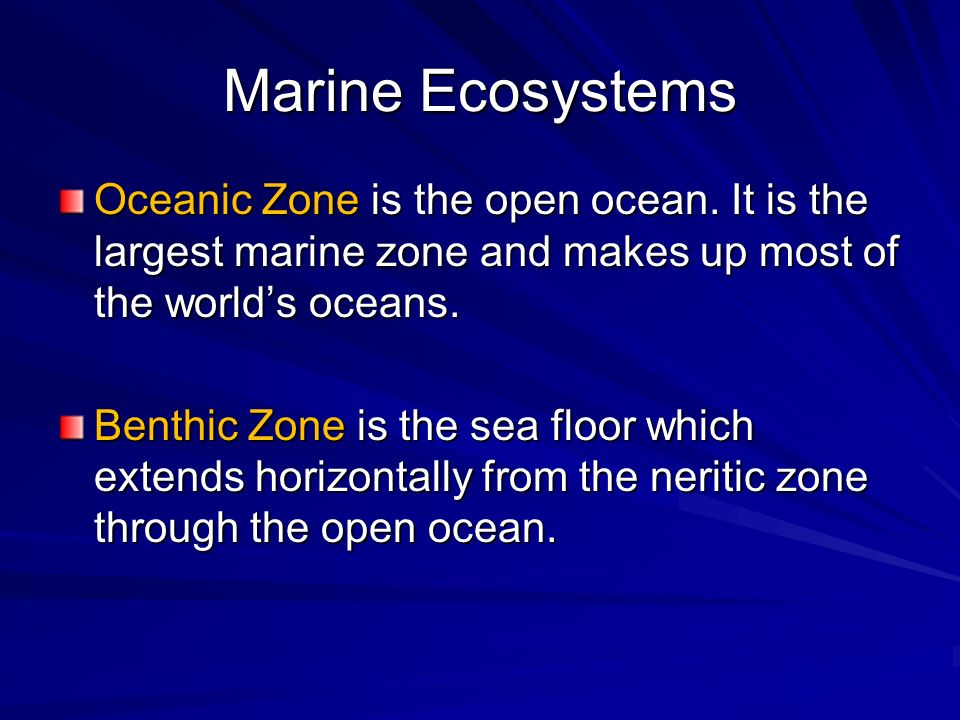 Marine Ecosystems Oceanic Zone is the open ocean. It is the largest marine zone and makes up most of the world's oceans.