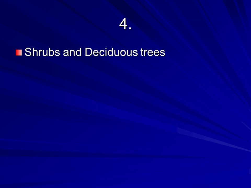 4. Shrubs and Deciduous trees