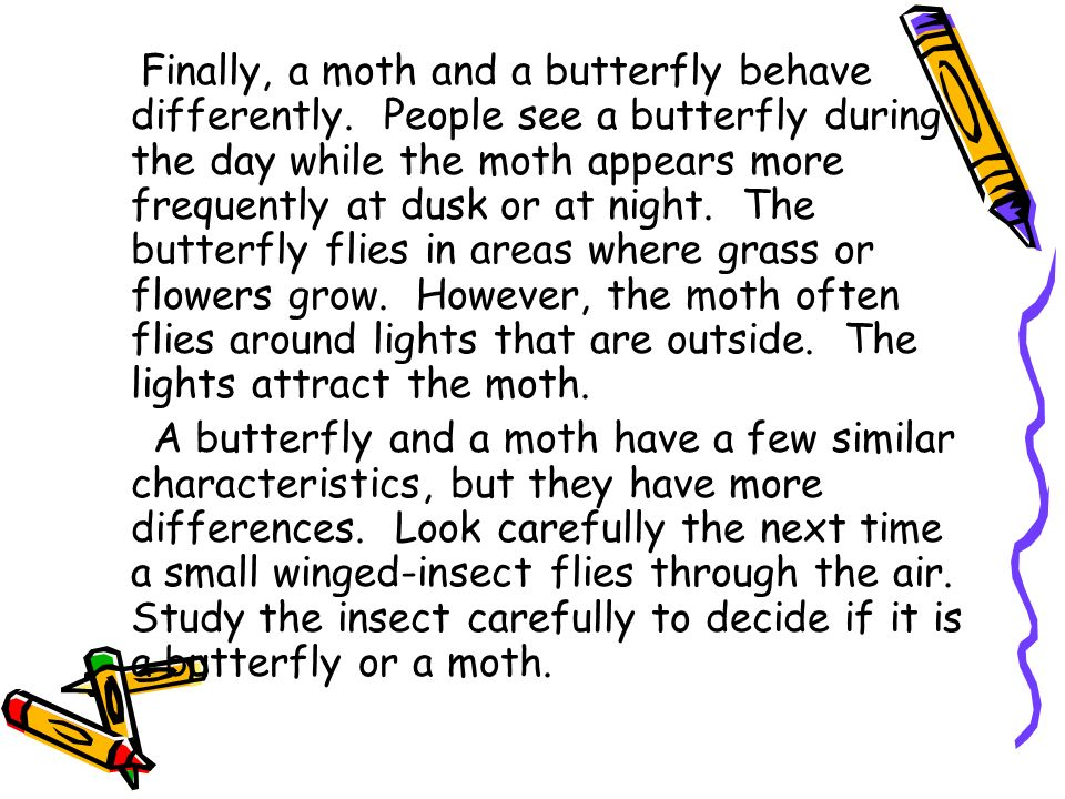 Finally, a moth and a butterfly behave differently