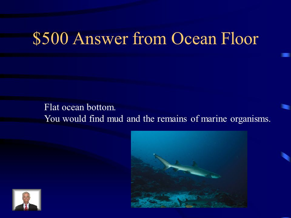 $500 Answer from Ocean Floor