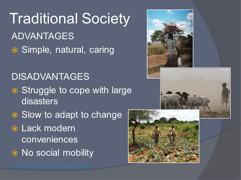 Traditional Society ADVANTAGES Simple, natural, caring DISADVANTAGES