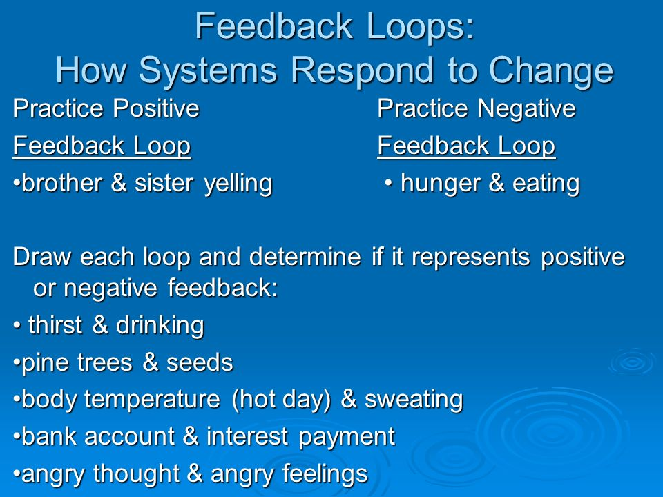 Feedback Loops: How Systems Respond to Change
