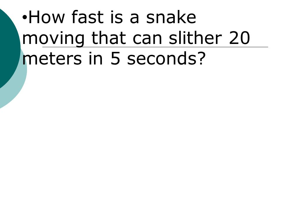 How fast is a snake moving that can slither 20 meters in 5 seconds