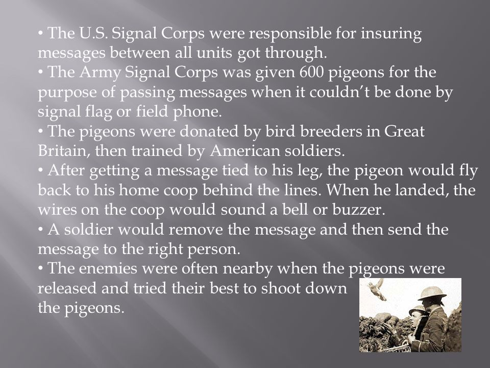 The U.S. Signal Corps were responsible for insuring messages between all units got through.