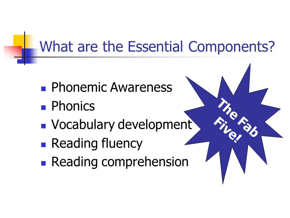 What are the Essential Components