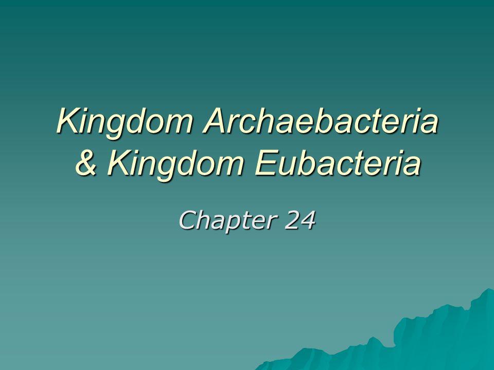 Unit 5: classification / microorganisms kingdom archaebacteria.
