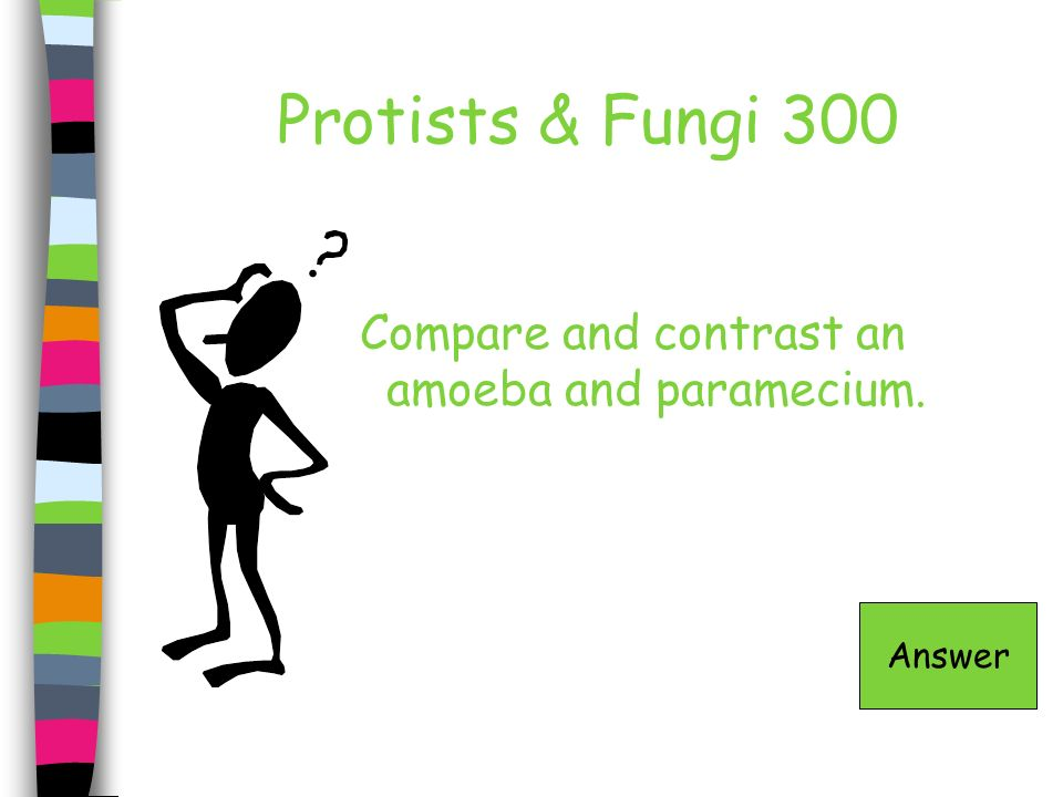 Protists & Fungi 300 Compare and contrast an amoeba and paramecium.