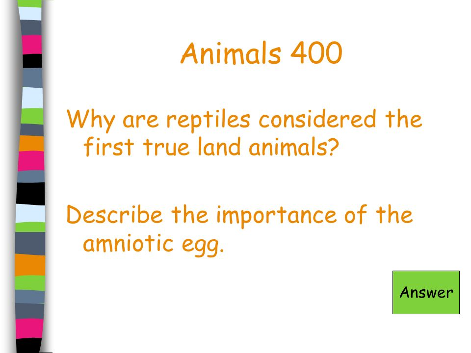 Animals 400 Why are reptiles considered the first true land animals