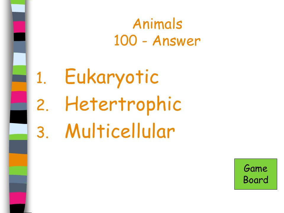 Animals 100 - Answer Eukaryotic Hetertrophic Multicellular Game Board