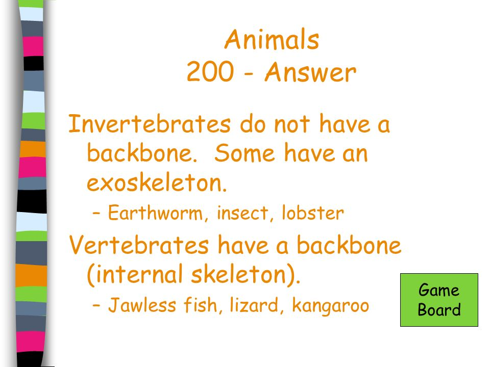 Animals 200 - Answer Invertebrates do not have a backbone. Some have an exoskeleton. Earthworm, insect, lobster.