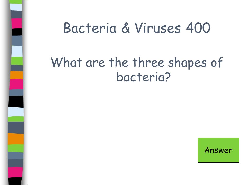 What are the three shapes of bacteria