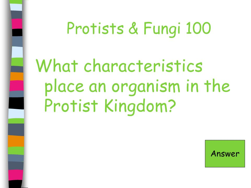 What characteristics place an organism in the Protist Kingdom