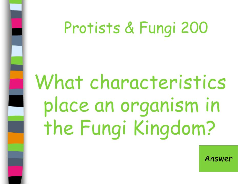 What characteristics place an organism in the Fungi Kingdom
