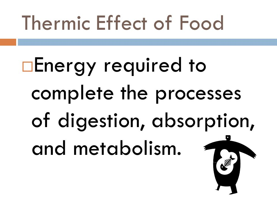 Thermic Effect of Food Energy required to complete the processes of digestion, absorption, and metabolism.