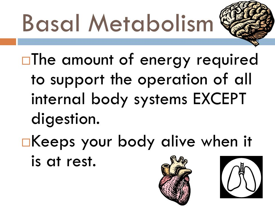 Basal Metabolism The amount of energy required to support the operation of all internal body systems EXCEPT digestion.