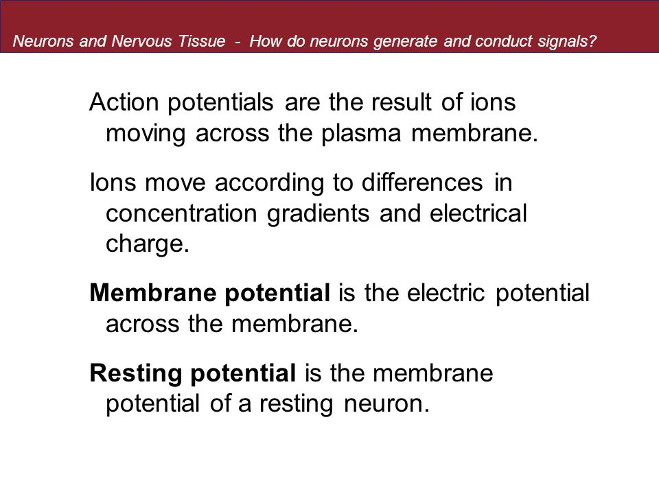 Membrane potential is the electric potential across the membrane.