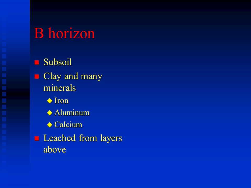 B horizon Subsoil Clay and many minerals Leached from layers above