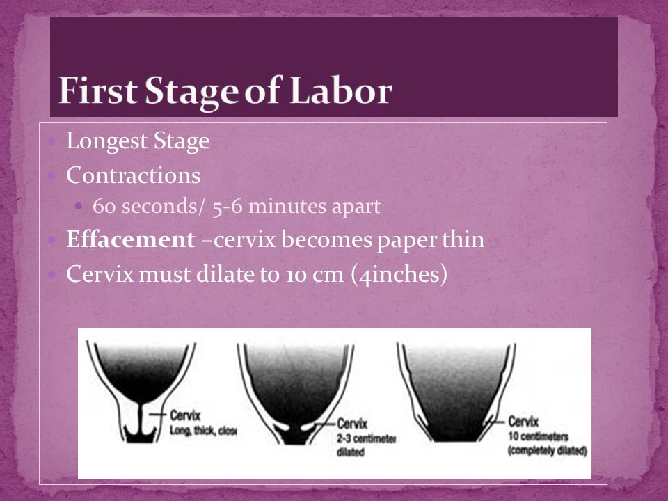 First Stage of Labor Longest Stage Contractions