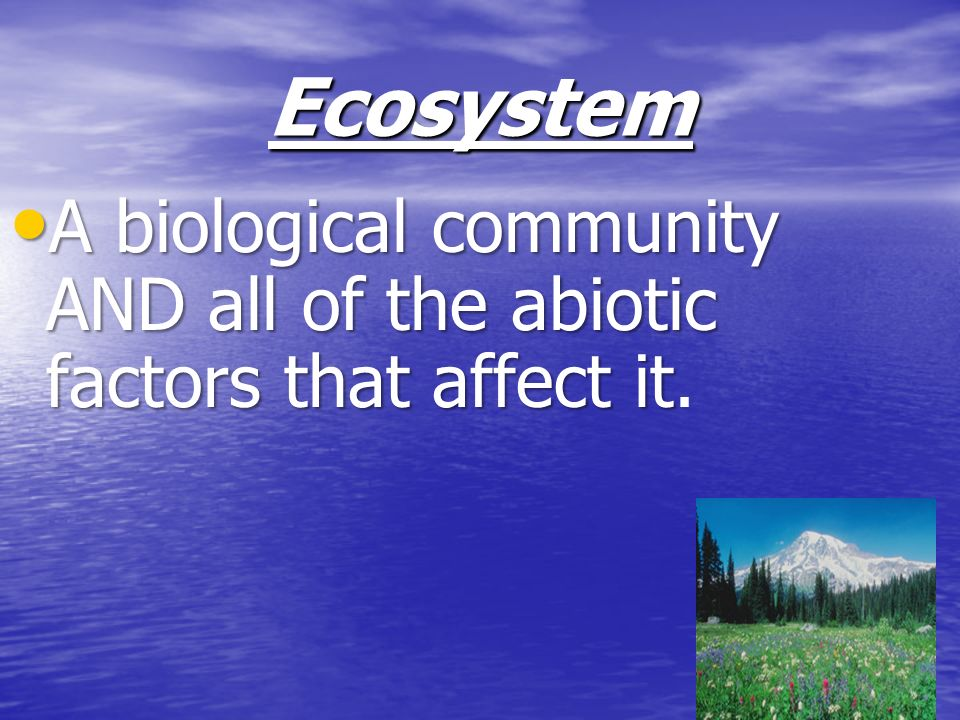 Ecosystem A biological community AND all of the abiotic factors that affect it.