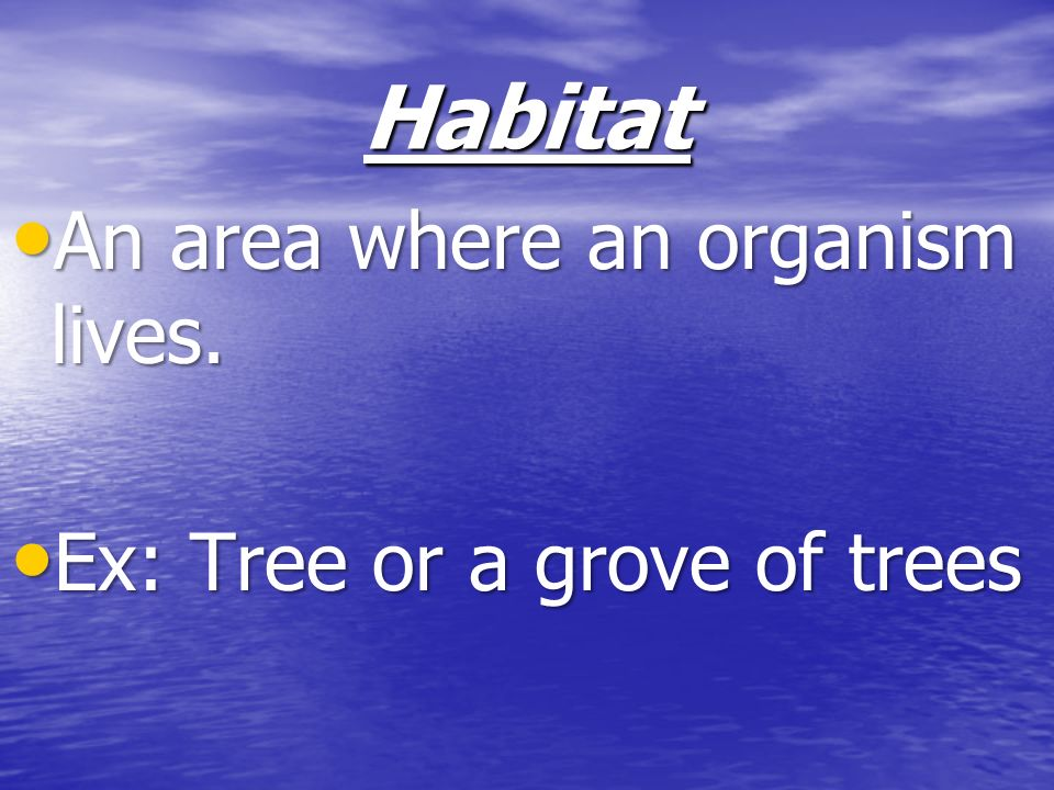 Habitat An area where an organism lives. Ex: Tree or a grove of trees