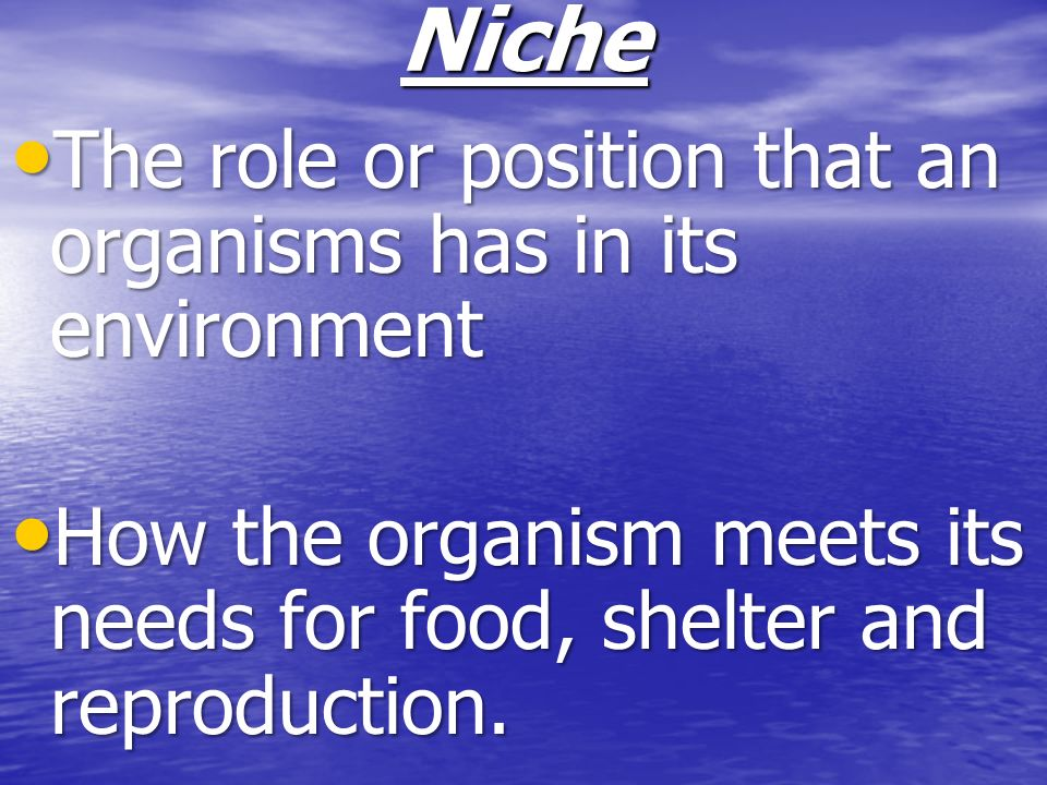 Niche The role or position that an organisms has in its environment