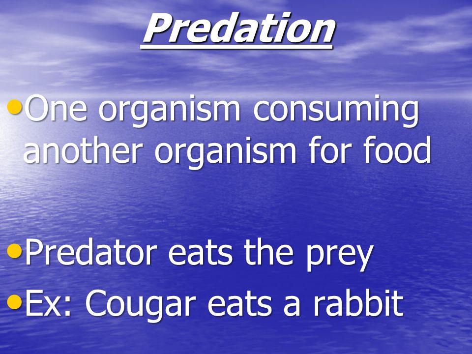 Predation One organism consuming another organism for food