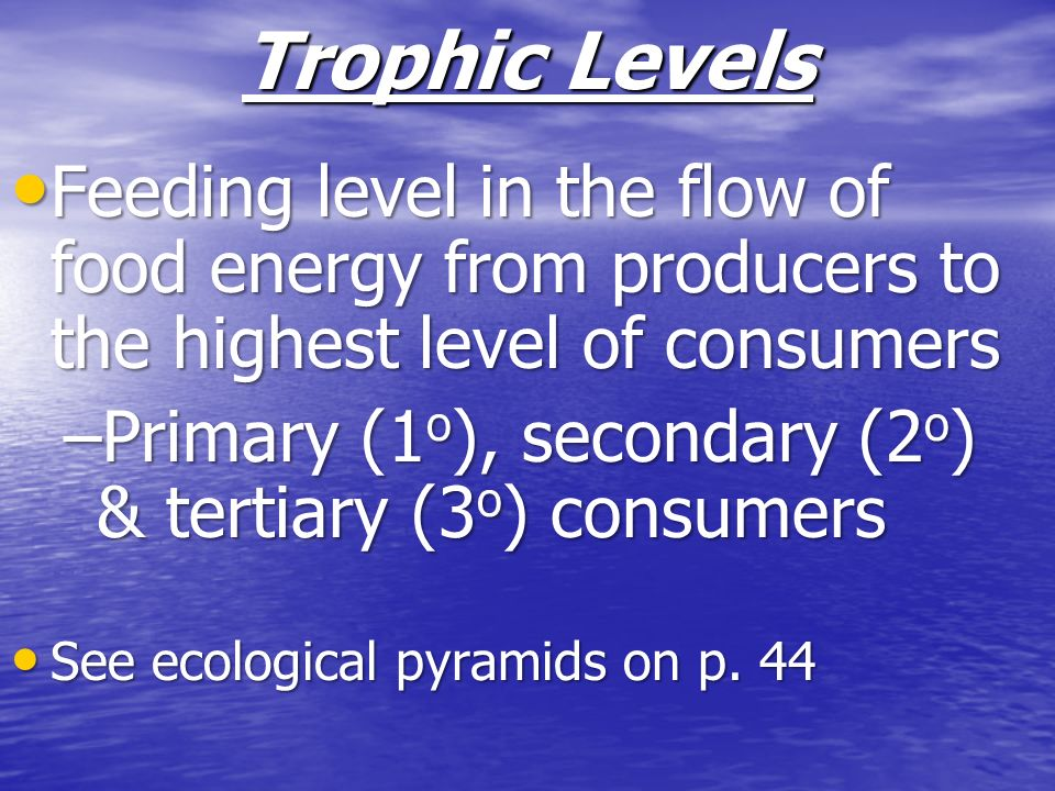Trophic Levels Feeding level in the flow of food energy from producers to the highest level of consumers.