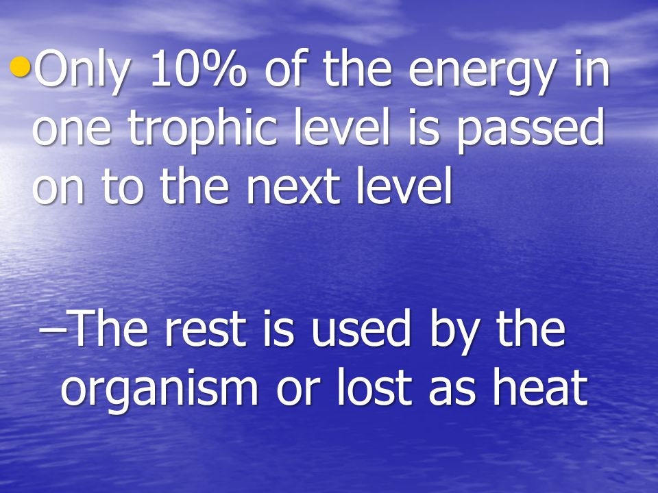 Only 10% of the energy in one trophic level is passed on to the next level