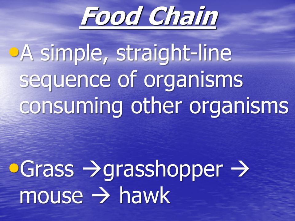 Food Chain A simple, straight-line sequence of organisms consuming other organisms.