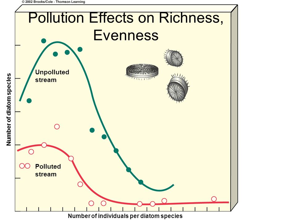 Pollution Effects on Richness, Evenness