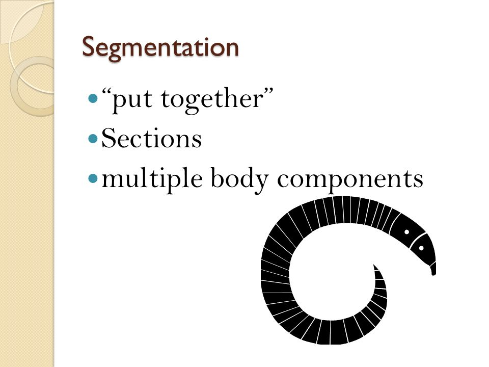 multiple body components