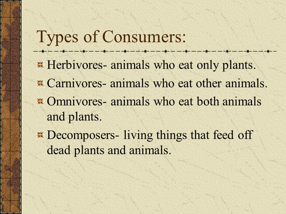 Types of Consumers: Herbivores- animals who eat only plants.