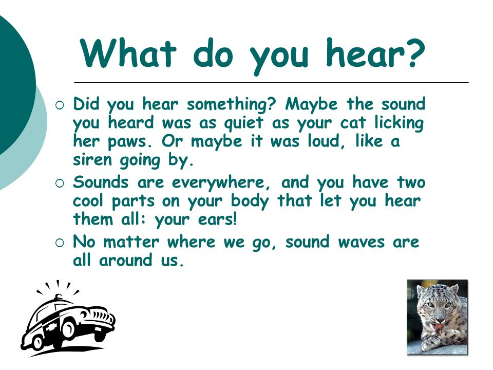 What do you hear