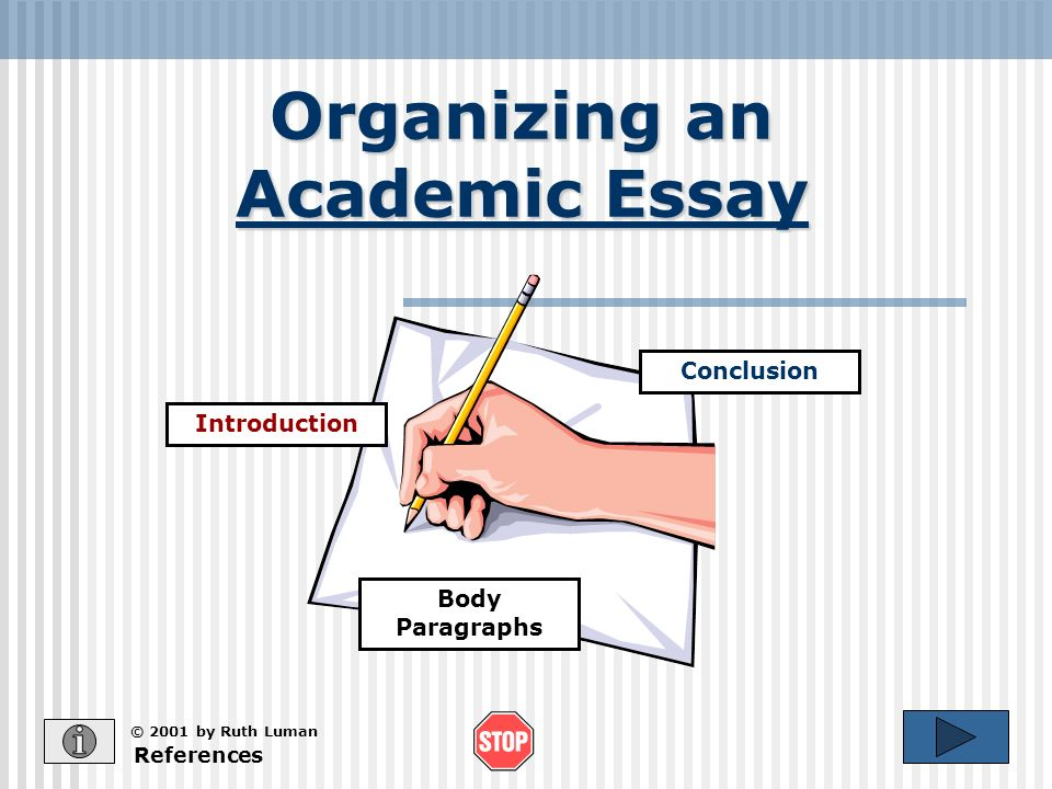 academic essays should always be organized by
