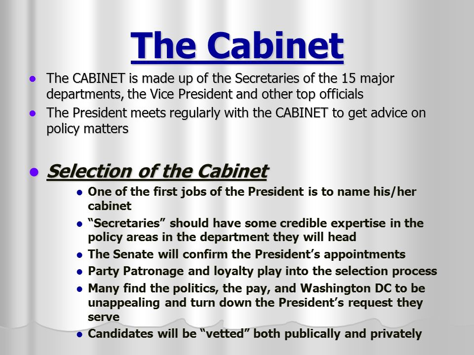 how many cabinet departments are there the executive branch the president and vice president 16687