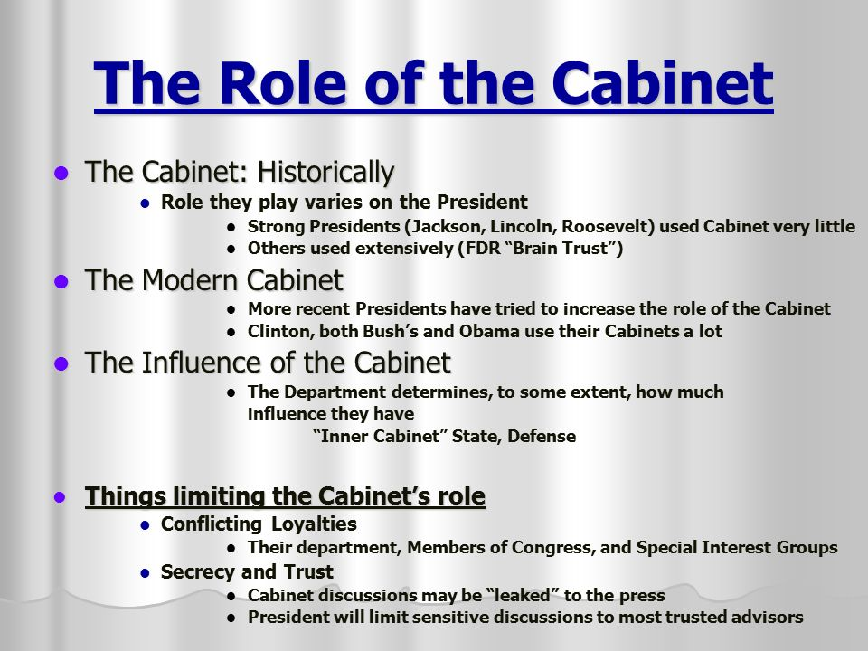 what is the role of cabinet members the executive branch the president and vice president 28313