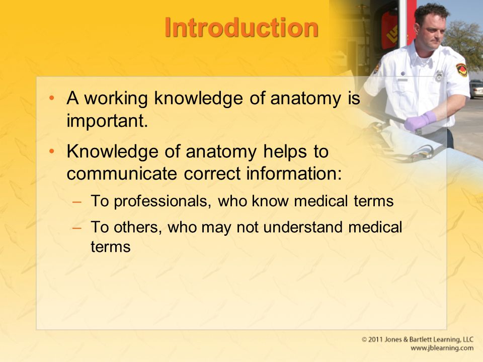 Chapter 5 The Human Body. - ppt video online download
